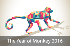 Year of the Monkey - 2016